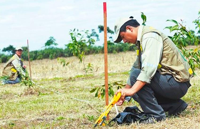 INRA coordina con productores titulación de predios agrícolas en Okinawa
