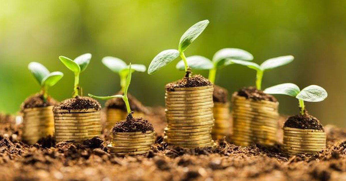 Visión para una economía vibrante y próspera