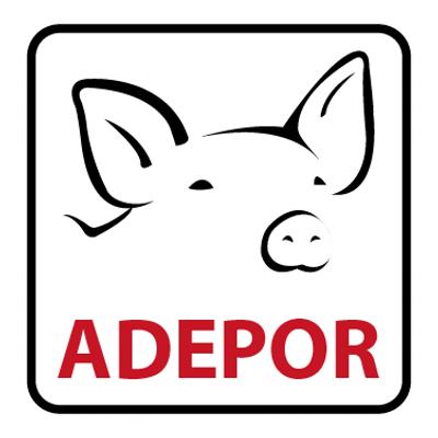 Asociación de Porcicultores de Santa Cruz expresa rechazo a propuesta de la Central Obrera Boliviana de incrementar salario básico en 12%