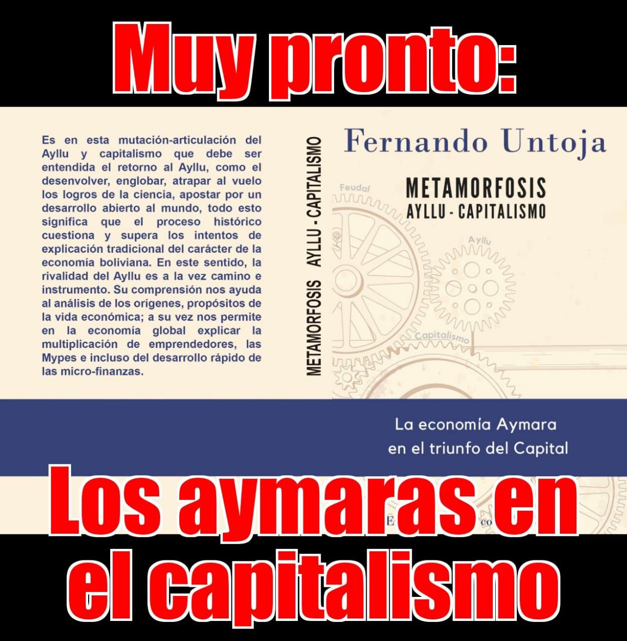 Candidato vicepresidencial Fernando Untoja y su visión: economía aymará en el triunfo del capital