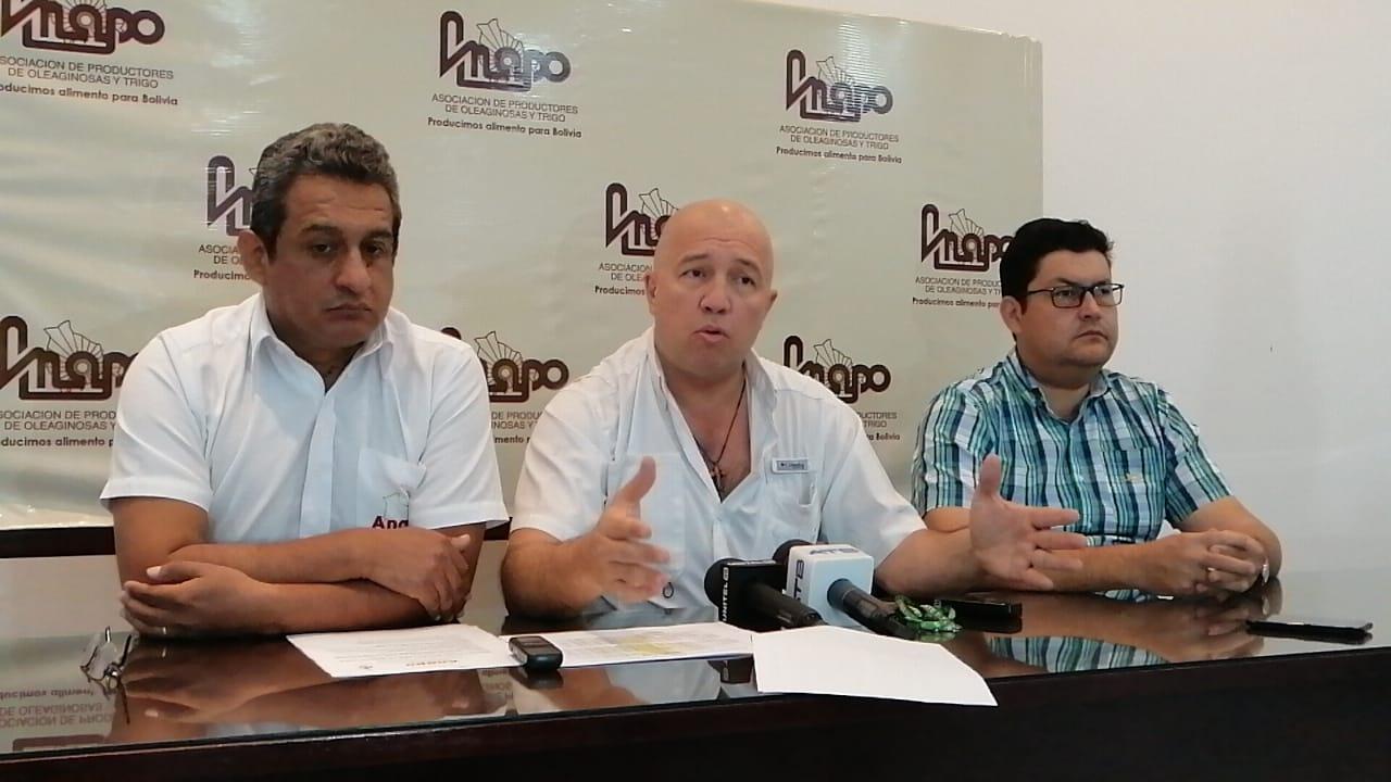 Anapo organiza primer Día Nacional del Girasol