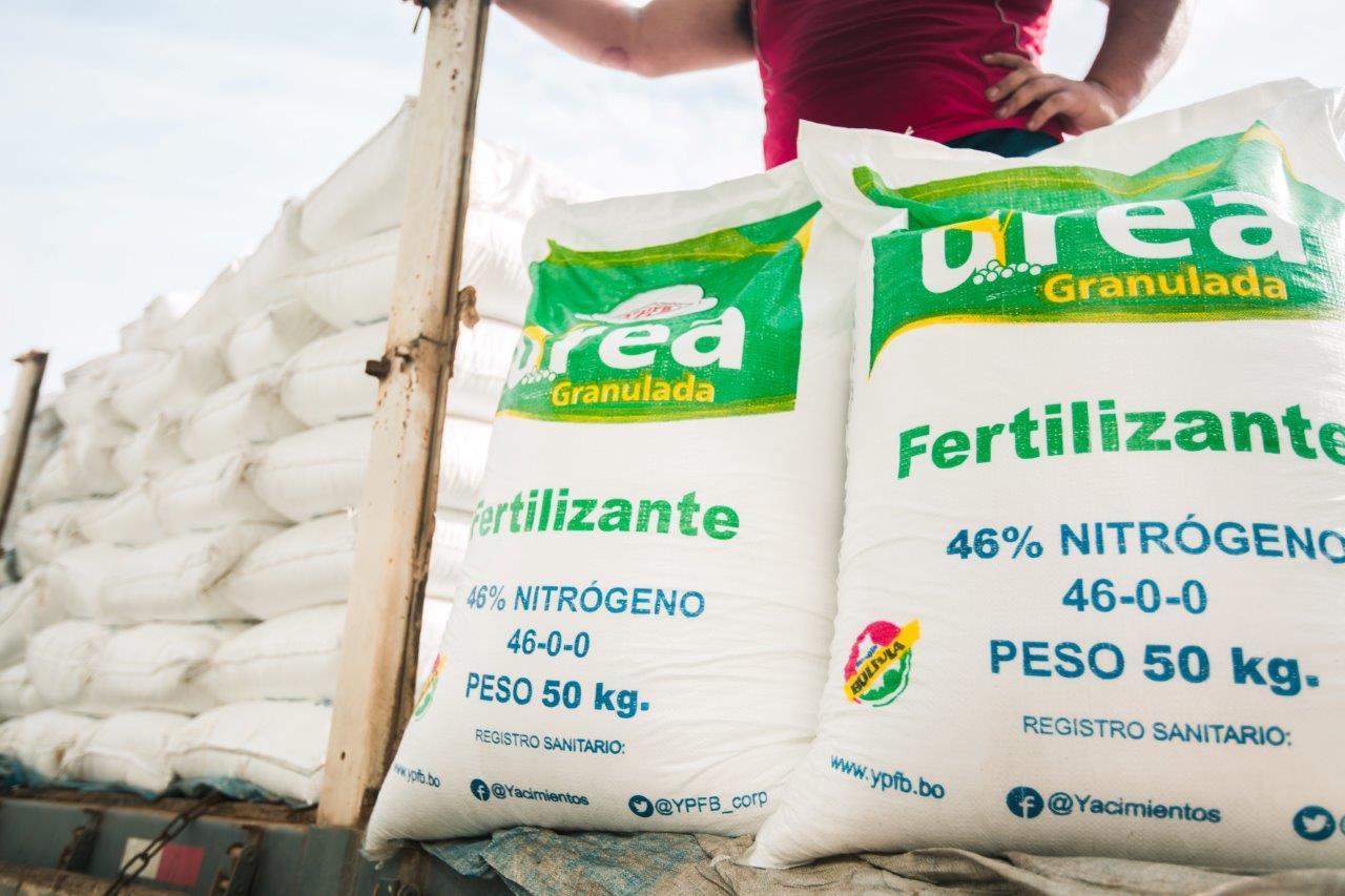 El 90% de los agricultores de  maíz optan por la urea boliviana
