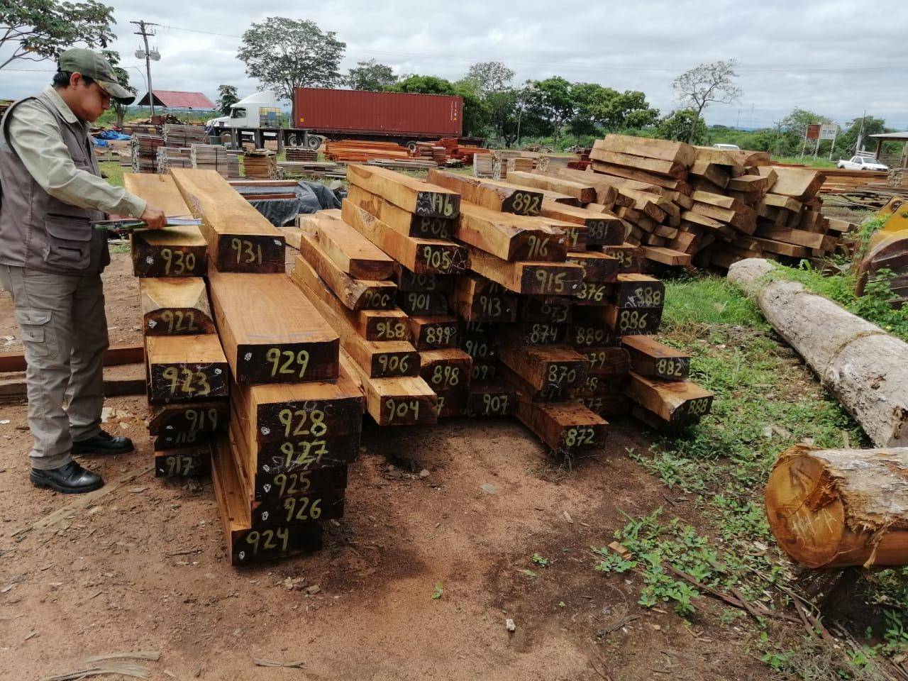ABT decomisa madera ilegal por un valor de Bs. 3 millones en el mercado nacional