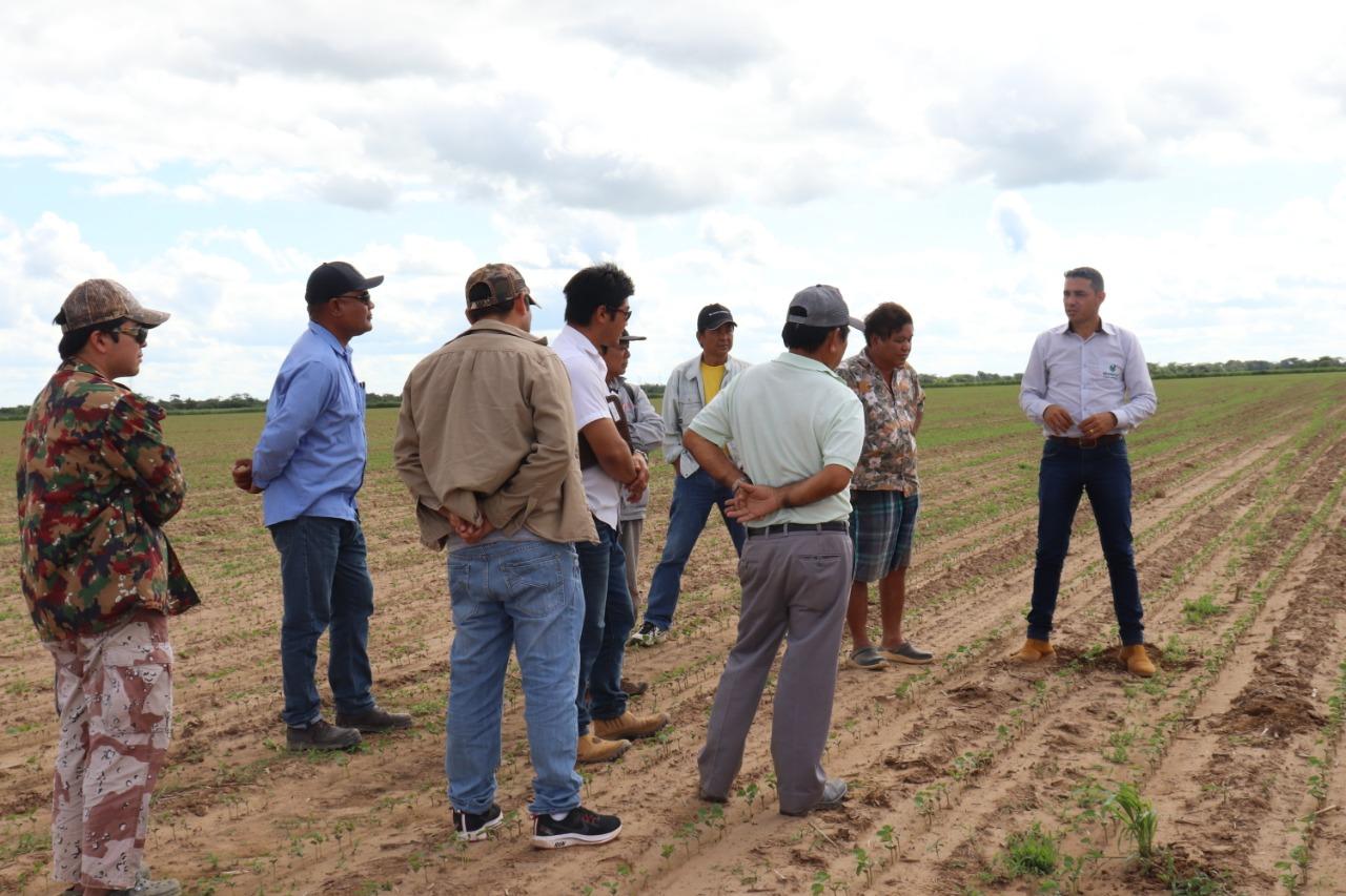 """""""Santa Cruz al priorizar el manejo sostenible del suelo, podría mejorar la productividad de los cultivos"""""""