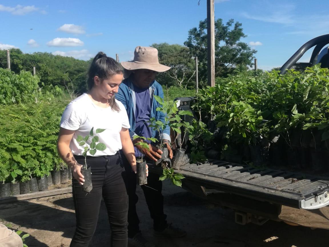 Reto cumplido: adidas entrega 1.500 plantines al Jardín Botánico