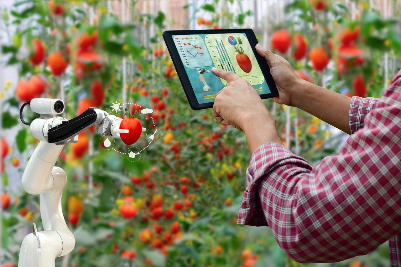 AgriHack Virtual 2020 busca ideas tecnológicas para el desarrollo agroindustrial en Bolivia