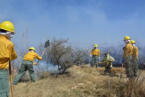 Ministerio de Medio Ambiente aclara que superficie quemada en el país asciende a 376.052,4 hectáreas