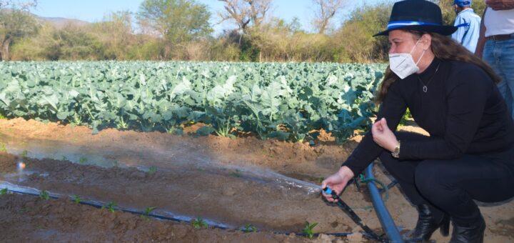 Gobierno favorece con sistemas de riego a pobladores de los valles de Santa Cruz