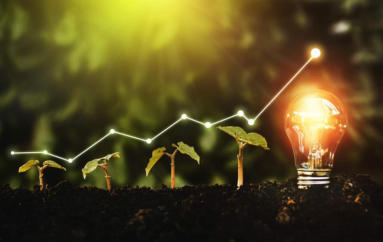 Resiliencia, Sustentabilidad e Inclusión: Las claves para una recuperación económica verde