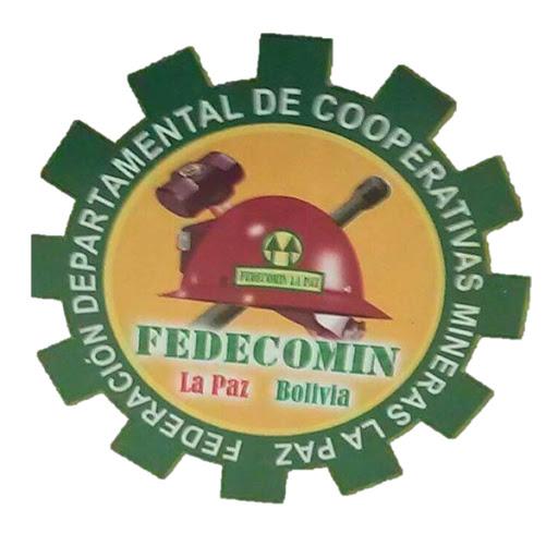 Representantes de Fedecomin La Paz reciben capacitación virtual