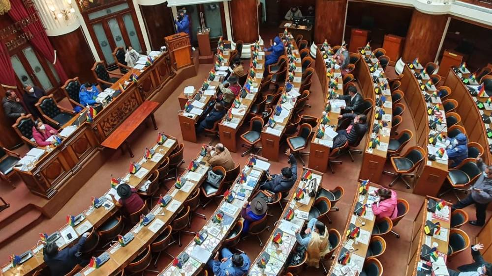 Gobierno denuncia que el MAS aprobó la ley del bono contra el hambre con fines electorales
