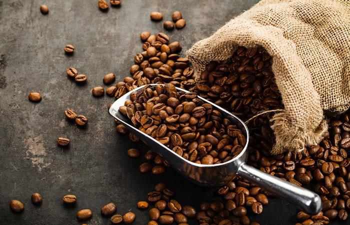 Se plantaron ocho millones de plantines de café a nivel nacional
