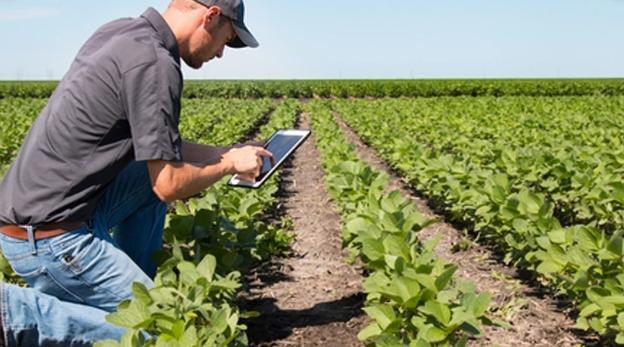 Países de la región innovan el área rural y la ganadería con tecnología inteligente
