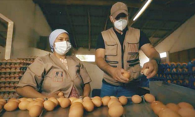 La granja Saavedra de Cochabamba crece con un enfoque solidario