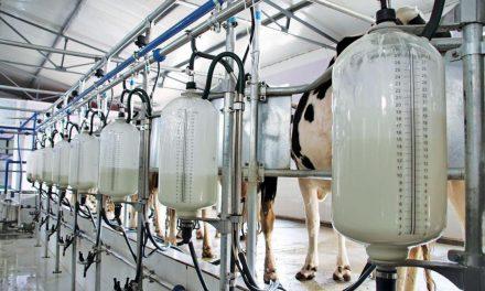 Contrabando, bajo consumo y disminución de lácteos en el subsidio preocupan al sector productivo
