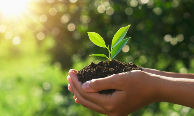 Fundare de CAINCO organiza actividad para limpiar la ciudad en el día mundial de la tierra