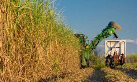 Sector sucroalcoholero propone e impulsa acciones para la reactivación económica del país