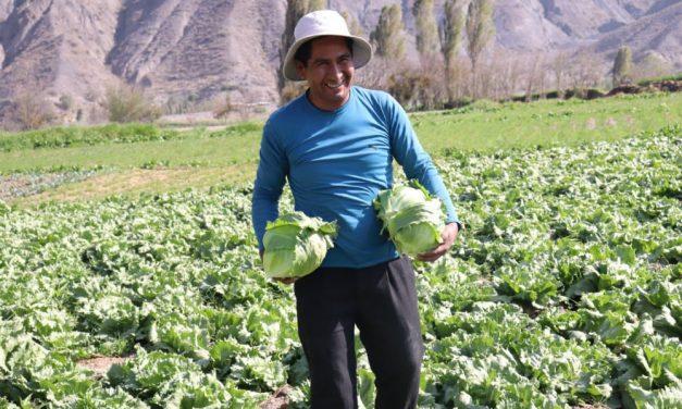 Seguro agrícola que protege a los pequeños productores de Bolivia